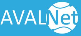 Nace AVALNET, Asociación de Empresas y Profesionales de Internet de la Comunidad Valenciana.