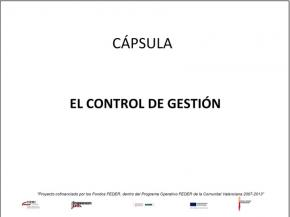 El control de la gestión