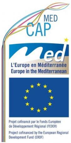 Logo MER2