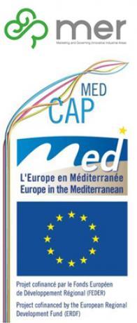 Logo MER+MED