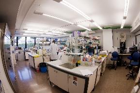 VALENTIA BIOPHARMA, investiga las enfermedades raras