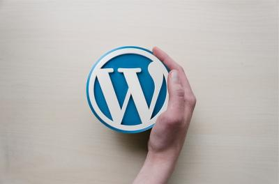 Medidas de seguridad en WordPress