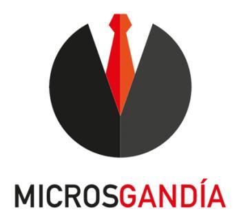 Agencia SEO Microsgandia SL