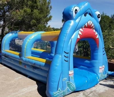 Deslizadores acuáticos para disfrutar del verano