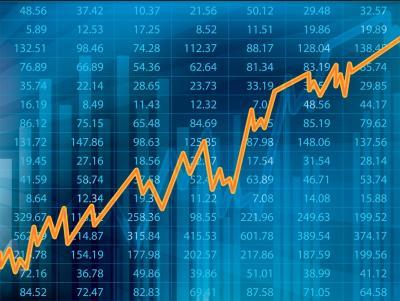 Invierte con Fintech Panda, el gestor automatizado de carteras