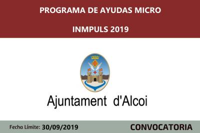 Ayudas Micro Inmpuls 2019