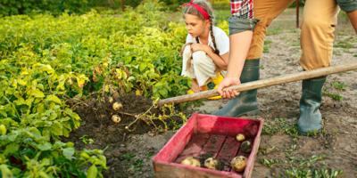 La Unión Europea toma medidas en el medio rural para paliar los efectos de la COVID-19