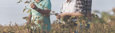 Desarrollo Rural Murcia, una plataforma de emprendimiento rural para impulsar el desarrollo de la región